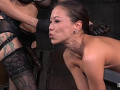 Asian, Asian BDSM, Oriental Big Breast, Asian Bondage, Asian Fisting, Asian Hard Fuck, Asian Hardcore, Oriental Lesbian Woman, Asian Tits, BDSM, Petite Big Tits, blondes, b.d.s.m, Extreme Dildo, Fisting, fuck, Teen Hard Fuck, hard, Lesbian, Lezdom Submissive, Lesbian Bondage Sex, Lesbian Fisting Orgy, lesbian Domination, Woman on Top, Skinny, Street Hooker, Strapon, Teen Lesbian Strapon, Boobs, huge Toys, Adorable Oriental Beauties, Asian Big Natural Tits, Perfect Asian Body, Perfect Body Masturbation, Boobies Fuck