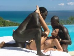 Threesomes, Amateur Pussy, Unprofessional Black and White Sex, Amateur Threesome, Non professional Swinger Housewife, hot Babe, Black Girl, Brunette, Amateur Girl Cums Hard, cum Shot, Hd, Hot Wife, Interracial, Amateur Teen Perfect Body, Sperm Covered, threesome, Vacation Hotel, Mature Housewife, Real Housewives in Threesome, Amateur Wife Interracial